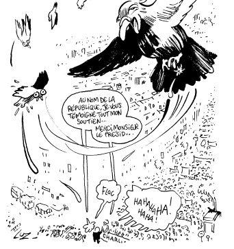 Catharsis Luz Futuropolis - pigeons
