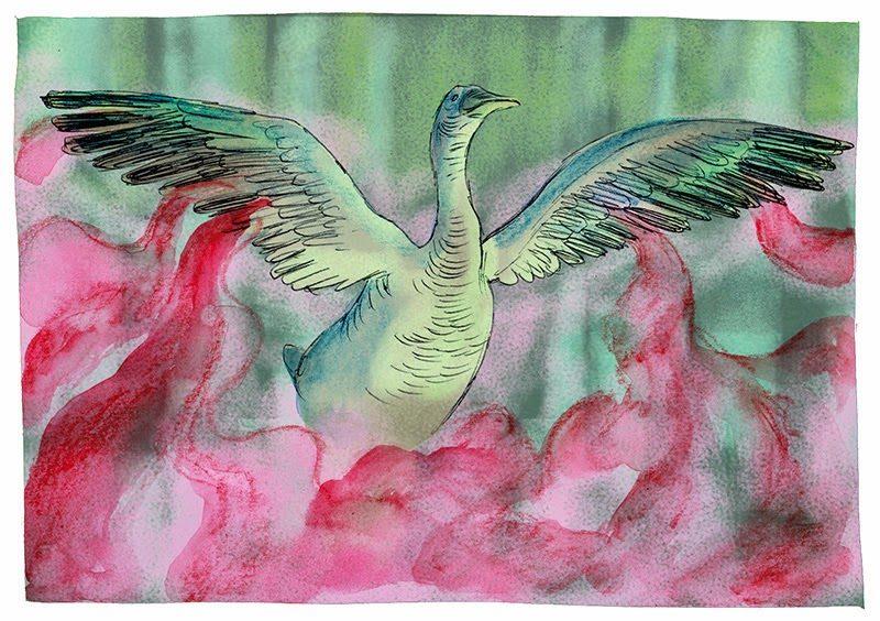 Les Royaumes du nord - tome 2 - Melchior - Oubrerie - oie sorcière