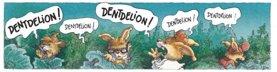Famille Passiflore - Mélodie Potagère - Plessix - Jouannigot - Dentdelion