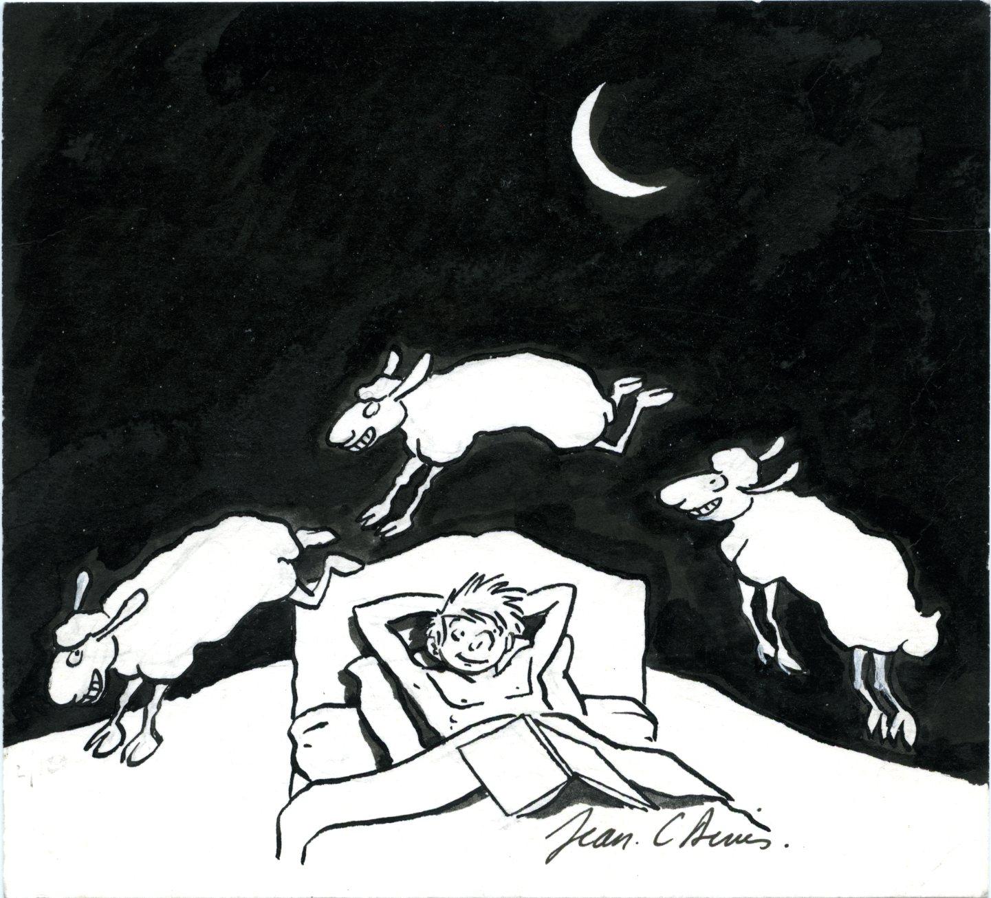 Jean-C. Denis - Luc Leroi - Galerie Oblique - moutons