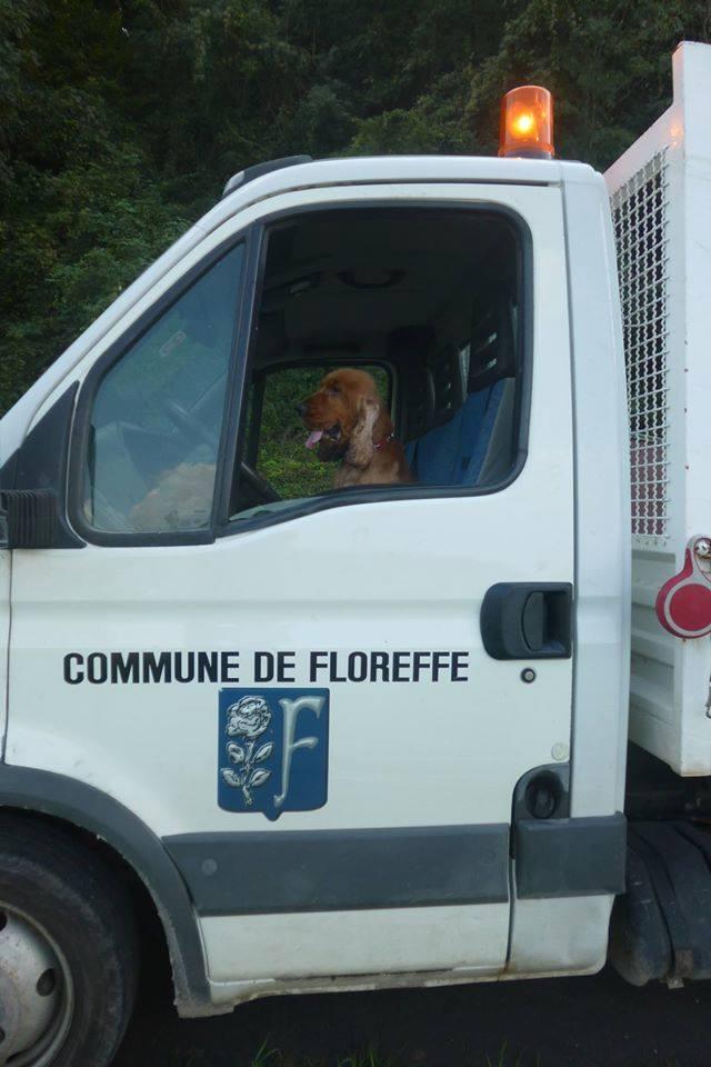 Lenon - Cocker - Floreffe - Deguisement - Etienne Dinant - commune de floreffe