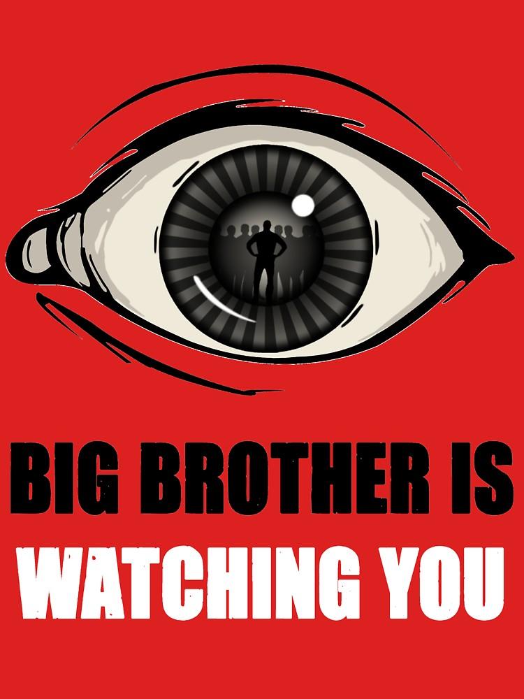 Big Bro wtching you